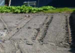 畝の作り方のコツは?幅はどう決める?方角に決まりは?